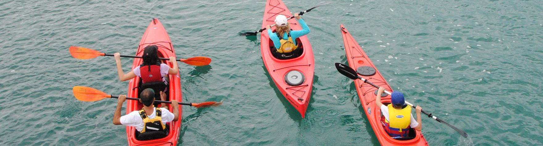 gold-coast-paddling